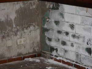Salzkristallablagerungen und feuchtes Mauerwerk machen eine Kellersanierung notwendig.